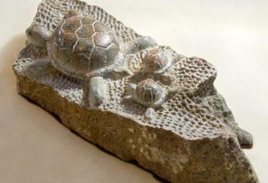 Cherokee art turtle