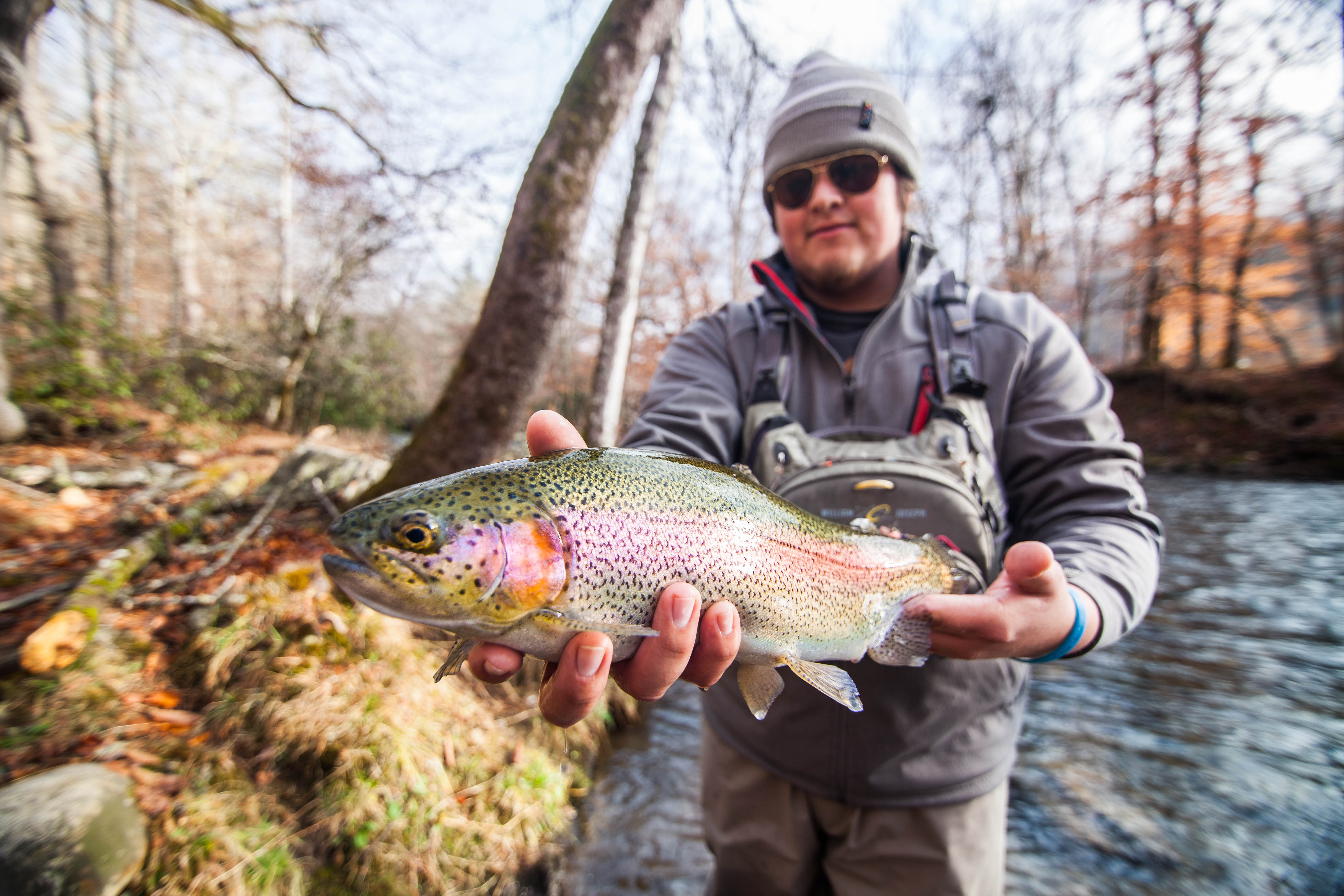 Cherokee s dog days trout tournament offers 10 000 in for Cherokee trout fishing