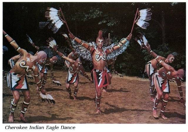 the sun dance ritual of the plains indians