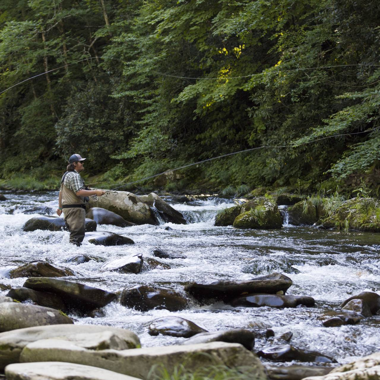 100 fish days tips on fishing cherokee by michael bradley for Fly fishing cherokee nc