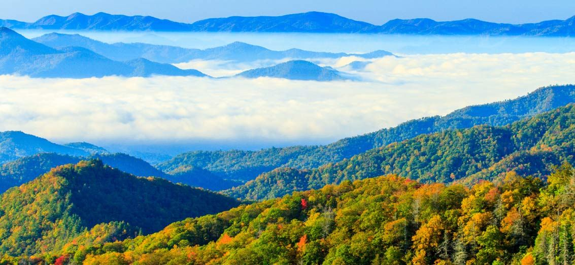 Gatlinburg Resort Cabins 3 Reasons You Should Choose