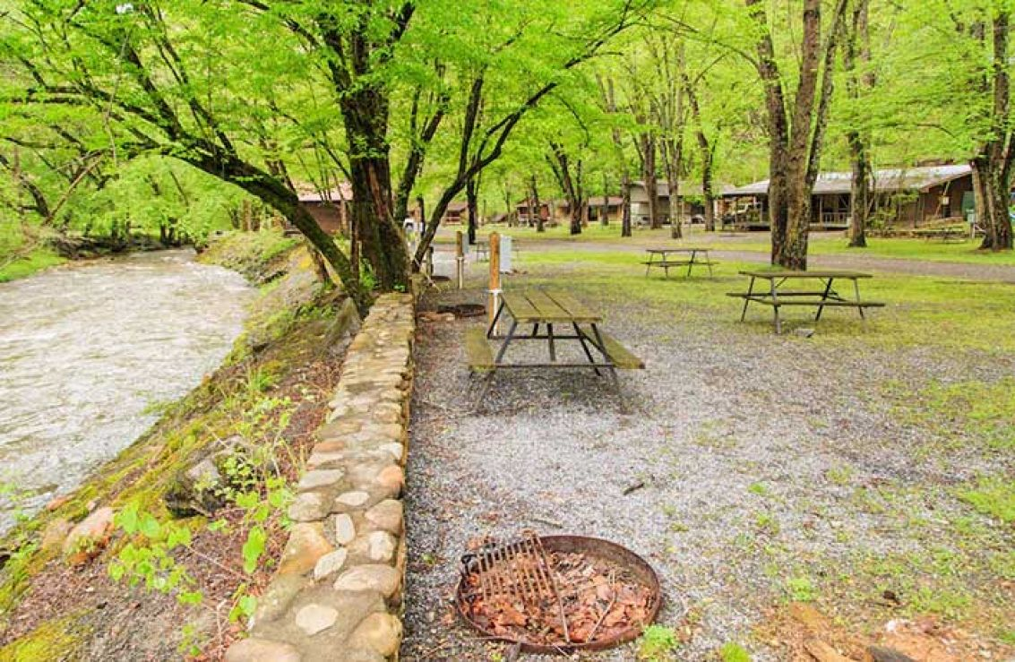 falls luxury cabins rentals waterfall trout waterfront house cabin brevard cherokee nc secluded